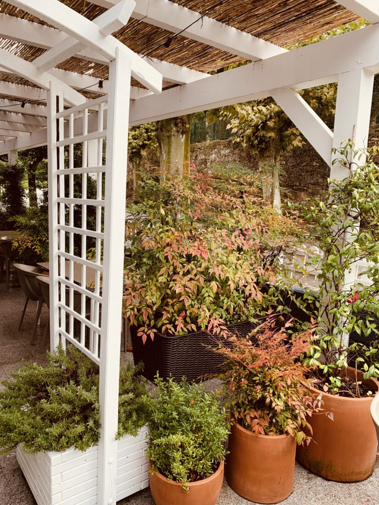 Terraza de Simoneta and Co en otoño